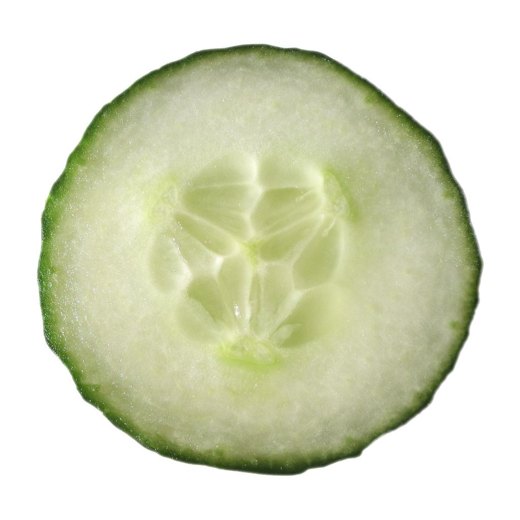 cucumber photo
