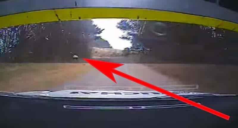 Un spectateur montre ses fesses à un pilote de rallye, ce qui arrive ensuite va vous choquer !