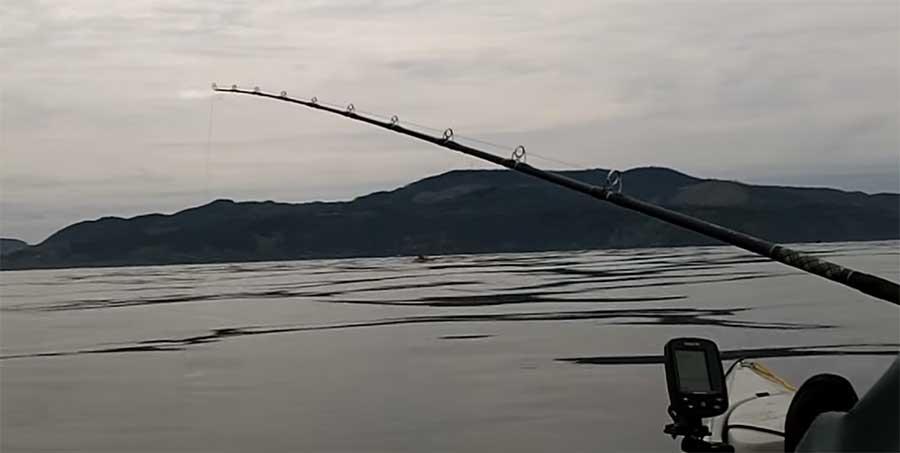 Il croyait avoir pris un gros poisson, ce qu'il remonte va vous étonner !